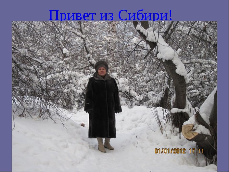 Привет из Сибири!