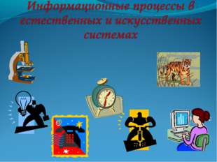 10 класс Вельдяева О. С., МОУ ЛСОШ № 1