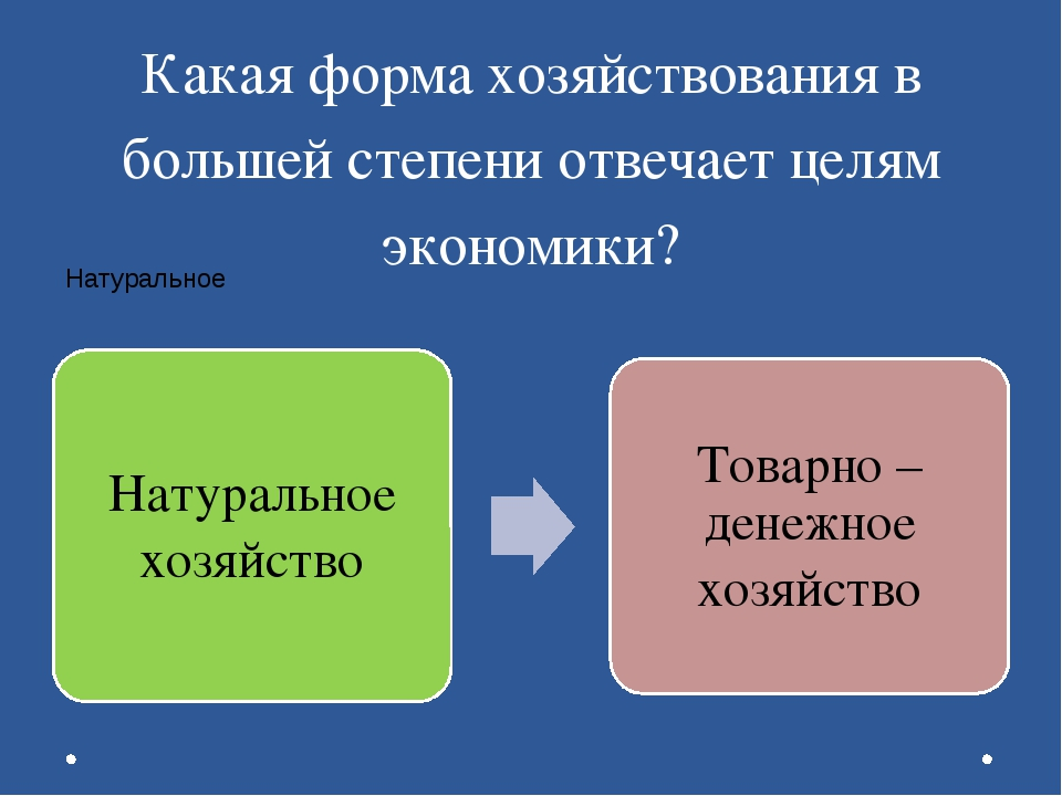Какая форма хозяйствования в большей степени отвечает целям экономики?