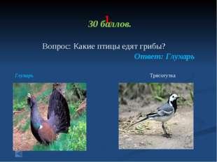 1. 70 баллов. Вопрос: Какие птицы спят во время полета? Ответ: Аисты во врем