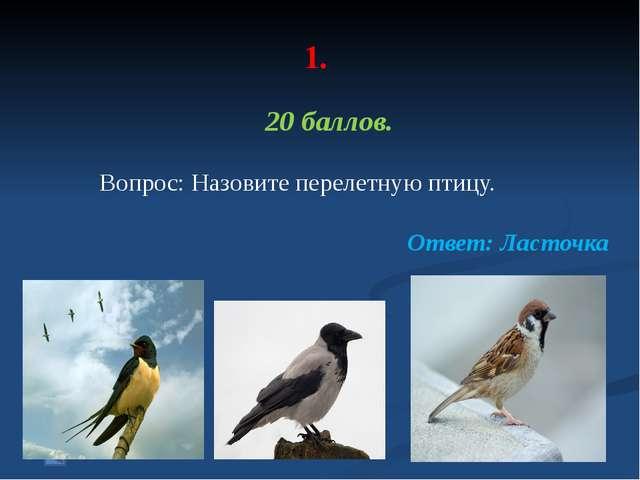 1. 50 баллов. Вопрос: Самая «умная» птица. Ответ: воробей, потому как у него...