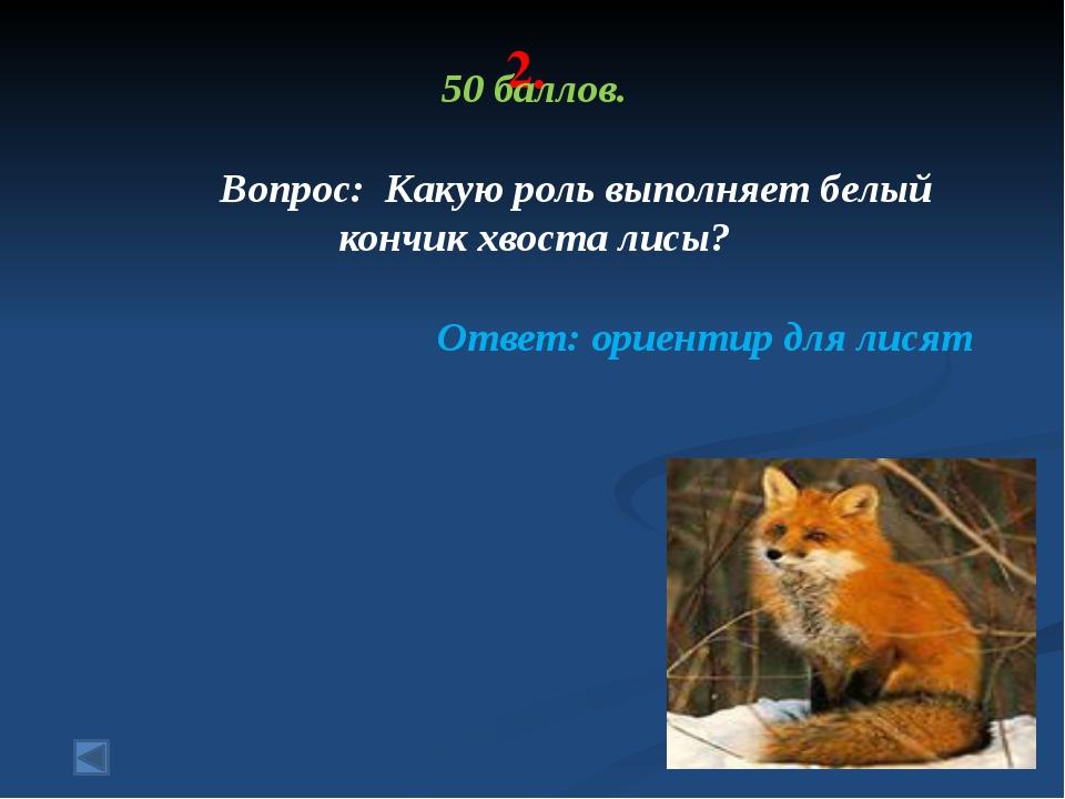 3. 20 баллов. Вопрос: Меж клюквы и морошки Жилец лесных болот. Он снизу седов...