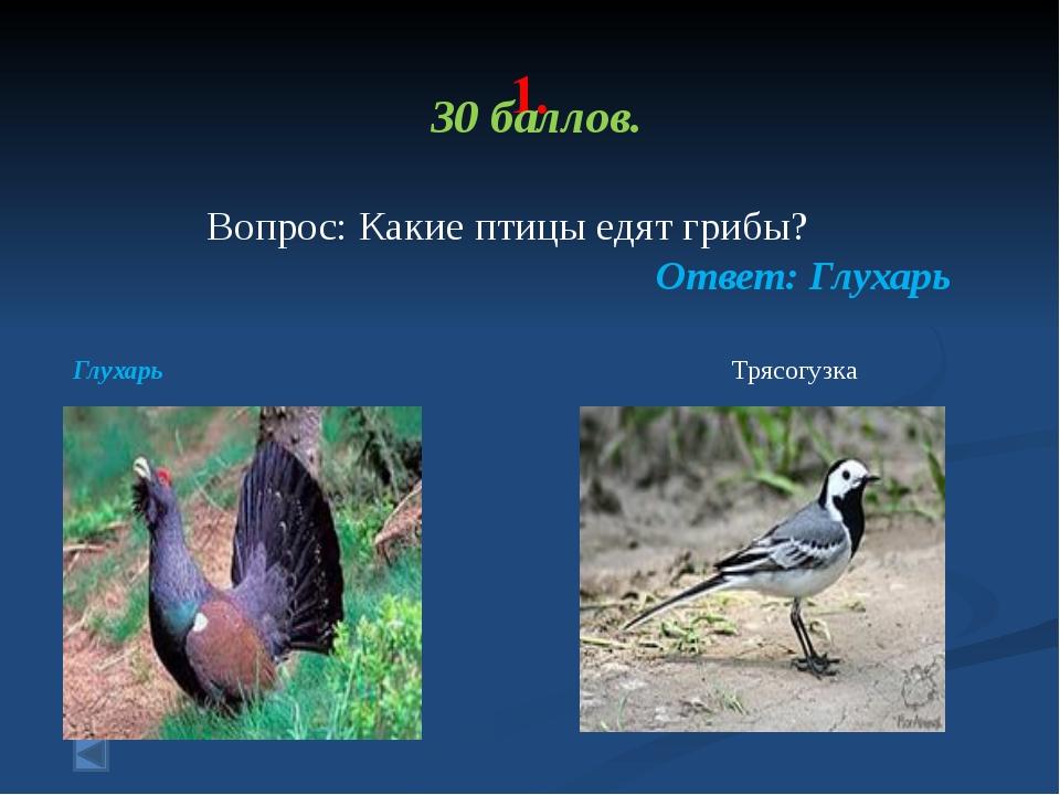 1. 70 баллов. Вопрос: Какие птицы спят во время полета? Ответ: Аисты во врем...
