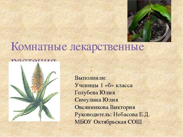 Комнатные лекарственные растения Выполнили: Ученицы 1 «б» класса Голубева Юли...