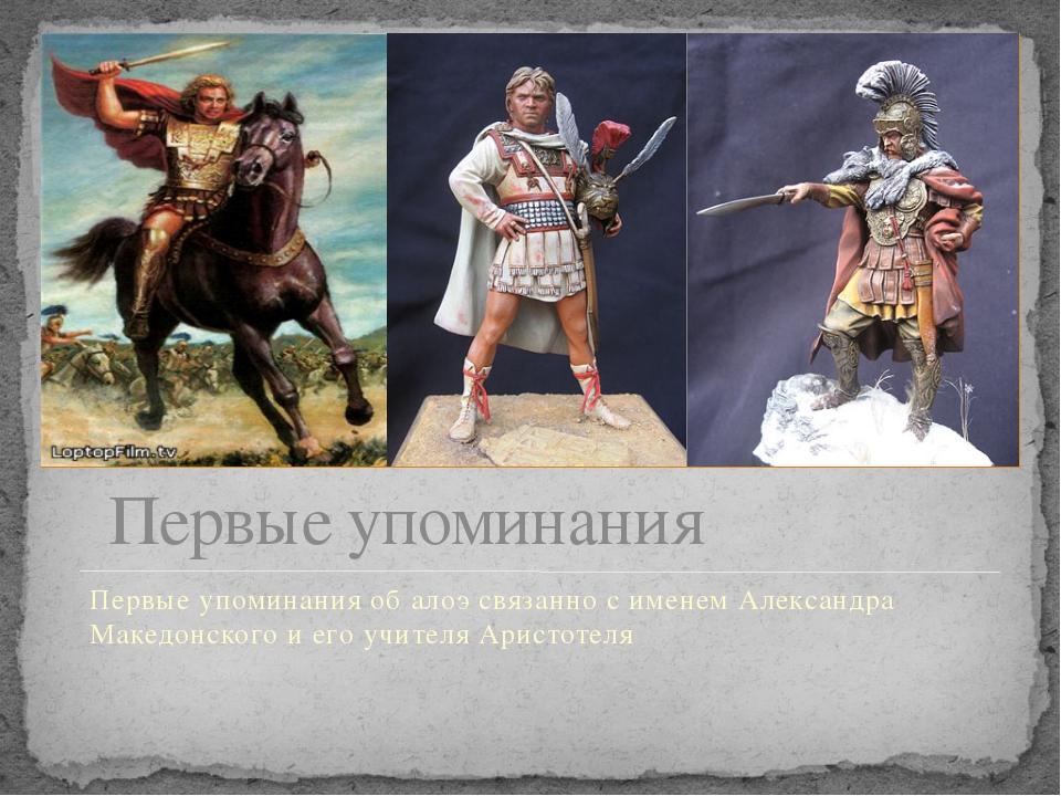 Первые упоминания Первые упоминания об алоэ связанно с именем Александра Маке...