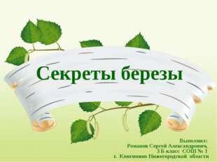 Секреты березы Выполнил: Романов Сергей Александрович, 3 Б класс СОШ № 1 г. К