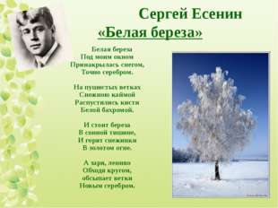 Сергей Есенин «Белая береза» Белая береза Под моим окном Принакрылась снегом