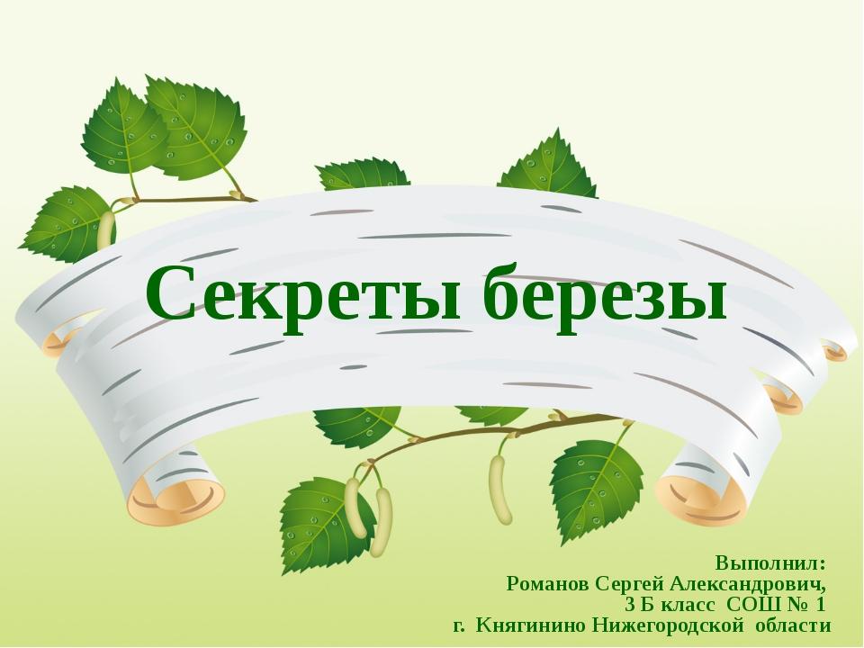 Секреты березы Выполнил: Романов Сергей Александрович, 3 Б класс СОШ № 1 г. К...