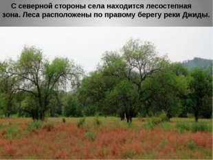 С северной стороны села находится лесостепная зона. Леса расположены по прав