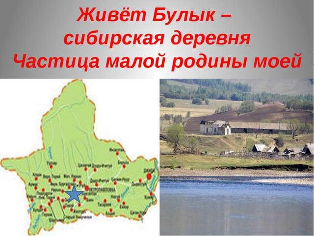 Живёт Булык – сибирская деревня Частица малой родины моей