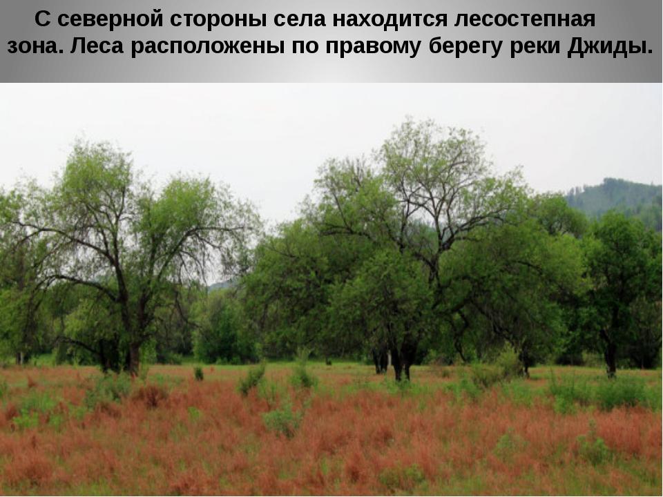 С северной стороны села находится лесостепная зона. Леса расположены по прав...