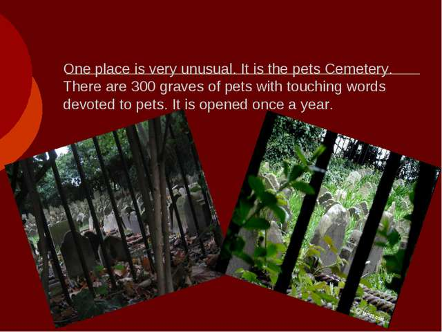 One place is very unusual. It is the pets Cemetery. There are 300 graves of p...
