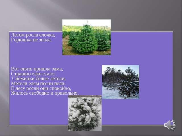 Летом росла елочка, Горюшка не знала. Вот опять пришла зима, Страшно елке ста...