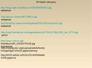 http://img1.aqa.ru/13/aqa.ru-20090409064624.jpgаквариум http://ipmos.ru/ipmos