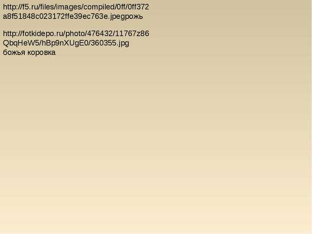 http://f5.ru/files/images/compiled/0ff/0ff372a8f51848c023172ffe39ec763e.jpegр...