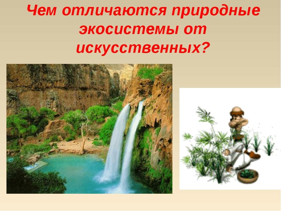 Чем отличаются природные экосистемы от искусственных?