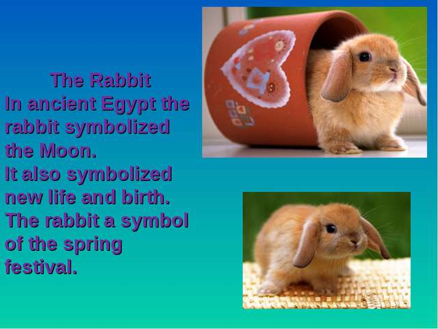 The Rabbit In ancient Egypt the rabbit symbolized the Moon. It also symbolize...
