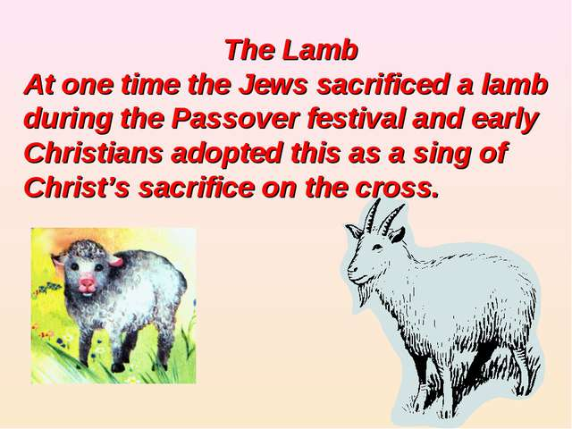 The Lamb At one time the Jews sacrificed a lamb during the Passover festival...