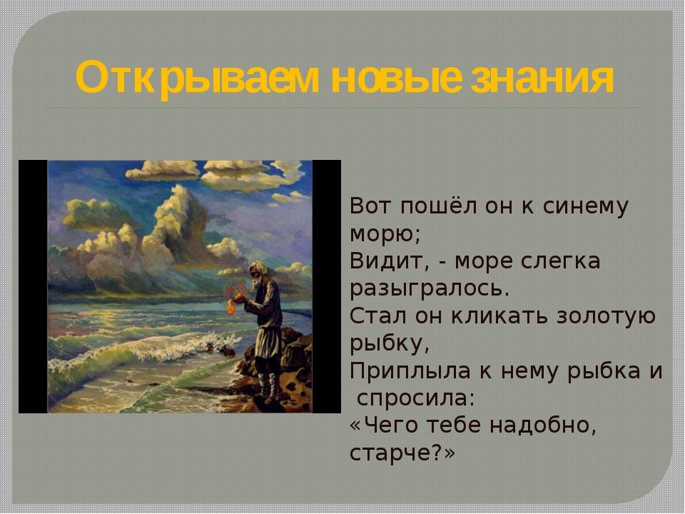 Открываем новые знания Вот пошёл он к синему морю; Видит, - море слегка разыг...