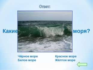 Какие вы знаете цветные моря? Чёрное море Красное море Белое море Жёлтое море