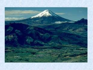Какая форма рельефа находится на западе материка? Почему?