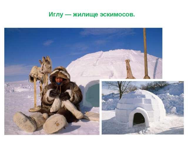 Иглу — жилище эскимосов.