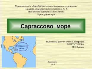 Саргассово море Муниципальное общеобразовательное бюджетное учреждение «Средн