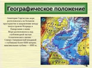 Географическое положение Акватория Саргассова моря расположилась на большом п