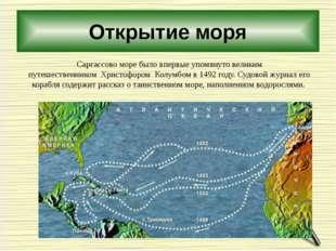 Открытие моря Саргассово море было впервые упомянуто великим путешественником