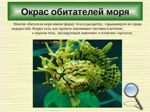 Окрас обитателей моря Многие обитатели моря имеют форму тела и расцветку, скр