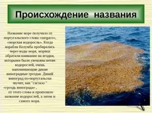 Происхождение названия Название море получило от португальского слова «sагgас