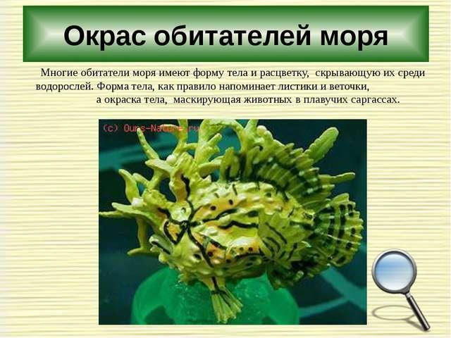 Окрас обитателей моря Многие обитатели моря имеют форму тела и расцветку, скр...