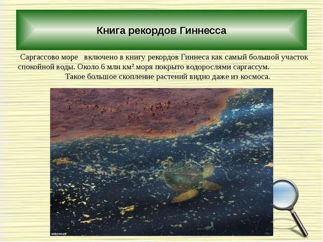 Книга рекордов Гиннесса Саргассово море включено в книгу рекордов Гиннеса ка...