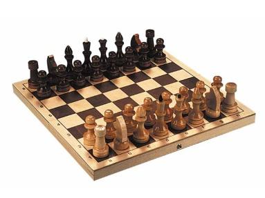 Шахматы, шашки, нарды, домино - большой выбор, низкие цены, доставка, сеть спортивных магазинов в Москве. Шахматы, шашки, нарды,