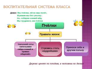 Наполняй соты капельками «мёда знаний и правил общений» Пчёлки Девиз: Мы пчё