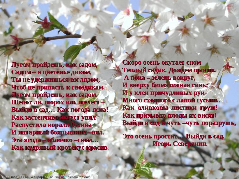 Лугом пройдешь, как садом, Садом – в цветенье диком, Ты не удержишься взгляд...