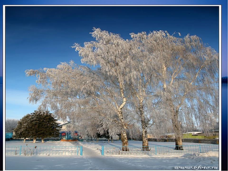 Белая береза Под моим окном Принакрылась снегом, Точно серебром. На пушистых...