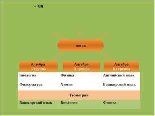 поток Алгебра I группа Алгебра II группа Алгебра III группа Биология Физика