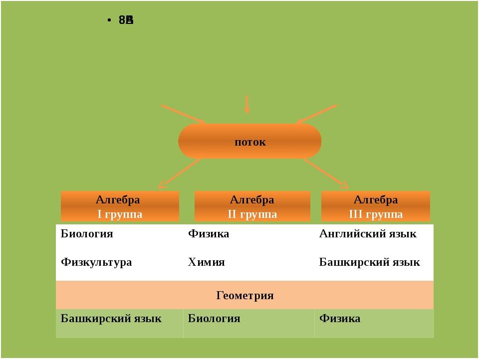 поток Алгебра I группа Алгебра II группа Алгебра III группа Биология Физика...