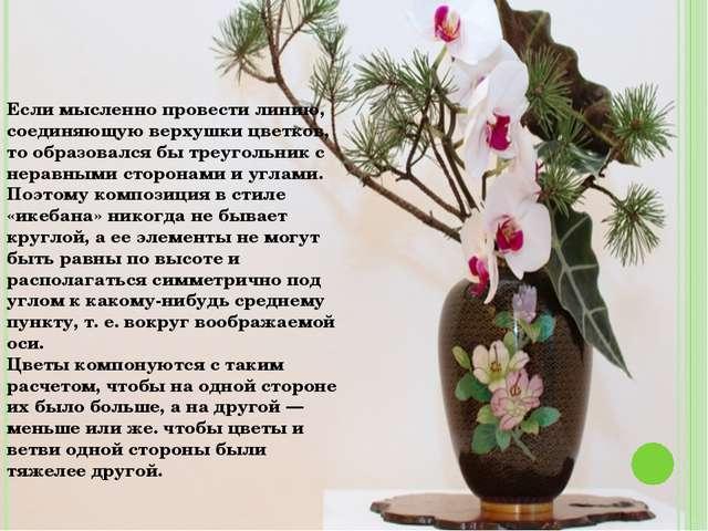 Если мысленно провести линию, соединяющую верхушки цветков, то образовался бы...