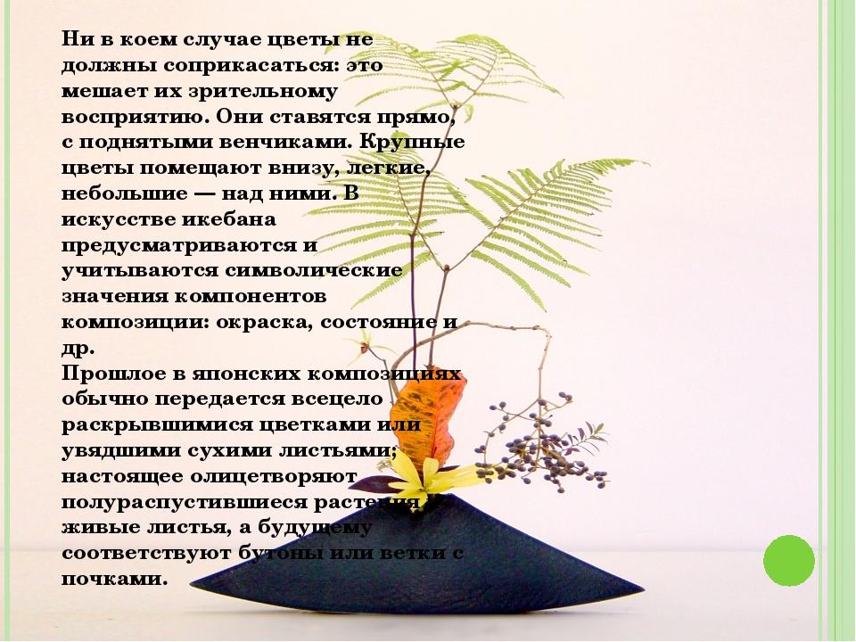 Ни в коем случае цветы не должны соприкасаться: это мешает их зрительному вос...
