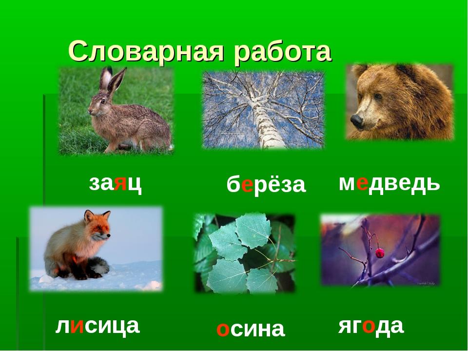 Словарная работа заяц берёза медведь лисица осина ягода