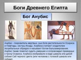 Анубис - покровитель мертвых, сын бога растительности Осириса и Нефтиды, сест