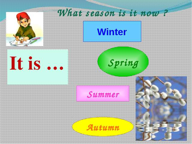 It is … Winter Spring Summer Autumn What season is it now ?