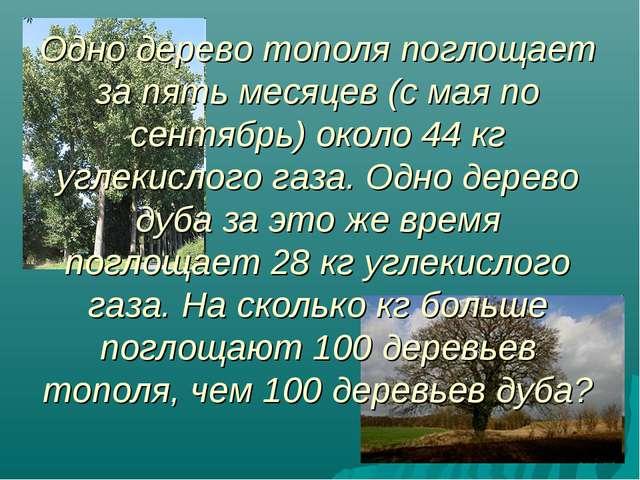 Одно дерево тополя поглощает за пять месяцев (с мая по сентябрь) около 44 кг...