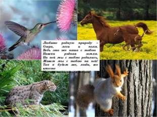 Любите родную природу – Озера, леса и поля. Ведь это же наша с тобою Навеки р