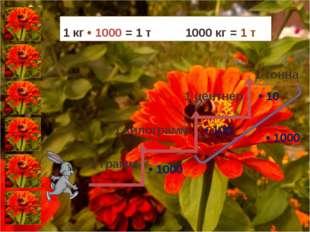 • 1000 • 10 • 100 • 1000 1 кг • 1000 = 1 т 1000 кг = 1 т 1 грамм 1 килограмм