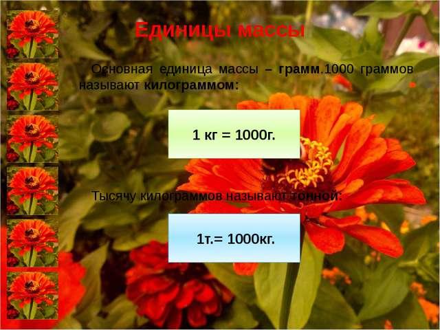 Единицы массы Основная единица массы – грамм.1000 граммов называют килограмм...