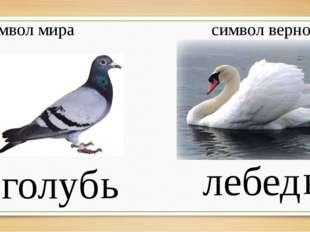 символ мира символ верности голуб лебед ь ь Что вы знаете об этих птицах? Со