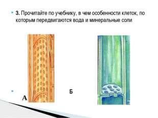 3.Прочитайте по учебнику, в чем особенности клеток, по которым передвигаются